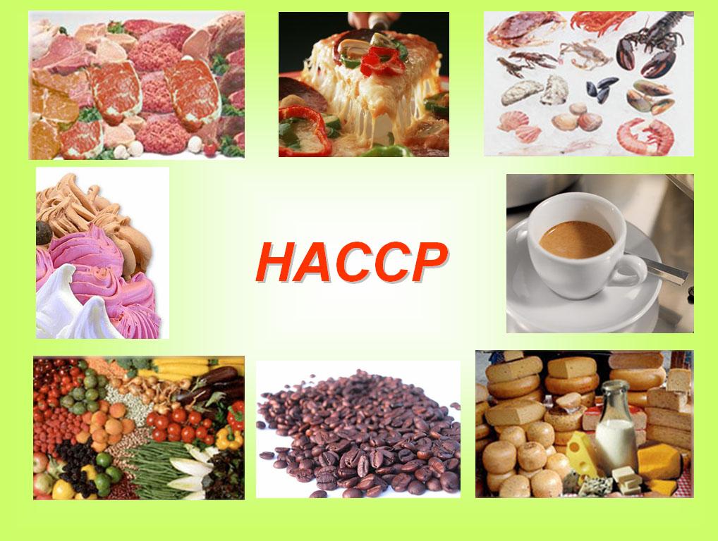 Konsultan HACCP